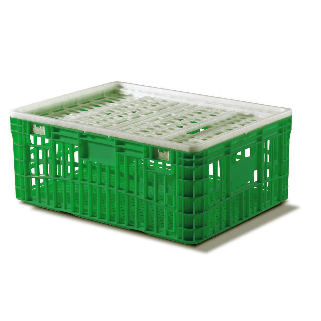 Jaula verde completa para transporte de aves 115 litros